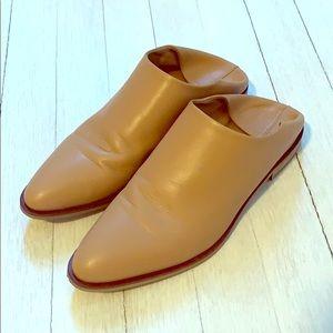 Everlane shoes